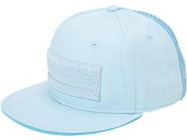 CAP, Saxe