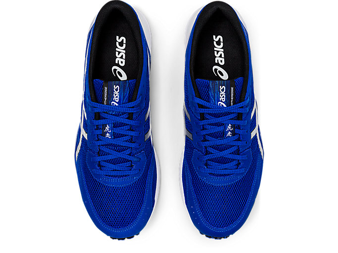 Top view of TARTHEREDGE, ASICS BLUE/PURE SILVER