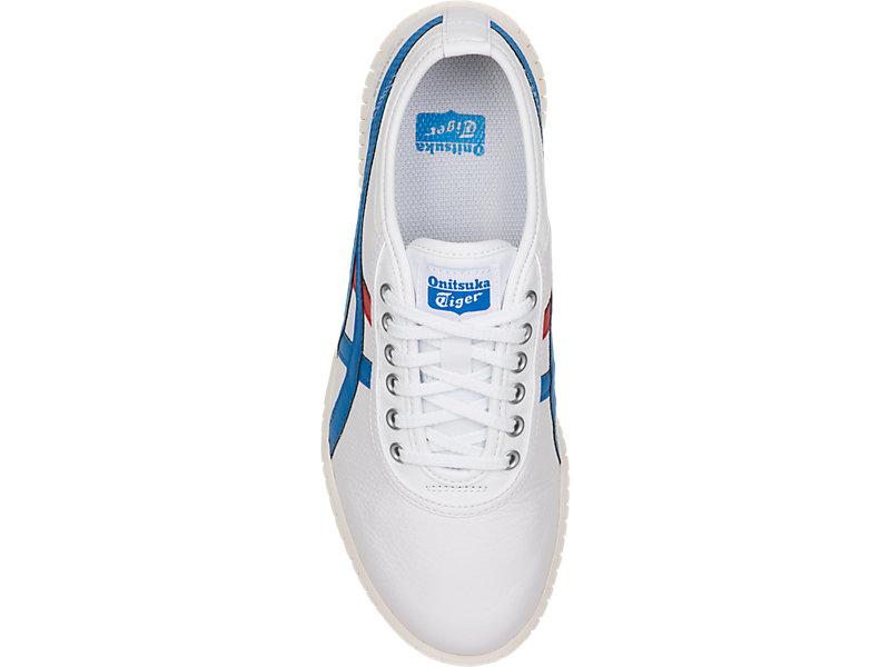 TSUNAHIKI WHITE/DIRECTOIRE BLUE 21 TP