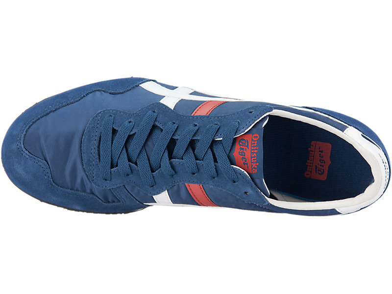 SERRANO INDEPENDENCE BLUE/WHITE 21 TP
