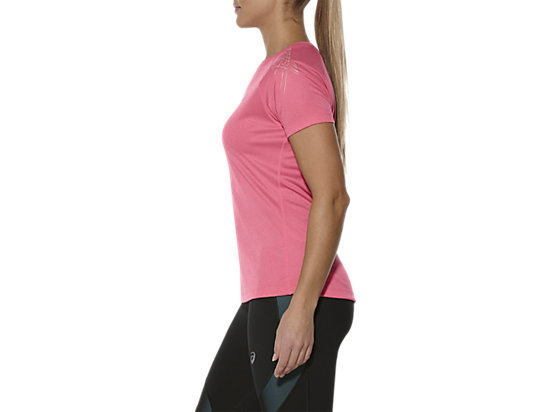 GESTREEPTE TOP MET KORTE MOUWEN CAMELION ROSE HEATHER 7
