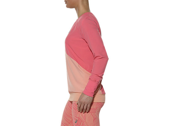 LONG-SLEEVED CREW TOP CAMELION ROSE 11
