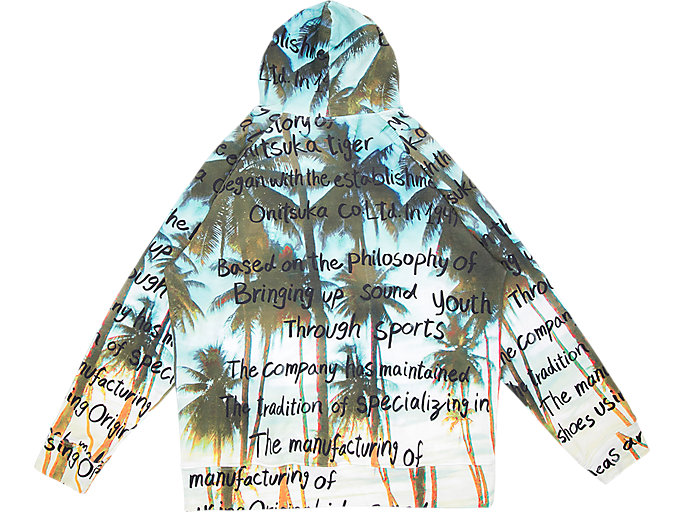 Back view of GRAPHIC HOODIE, PEACOAT