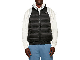 Front Top view of Down Vest