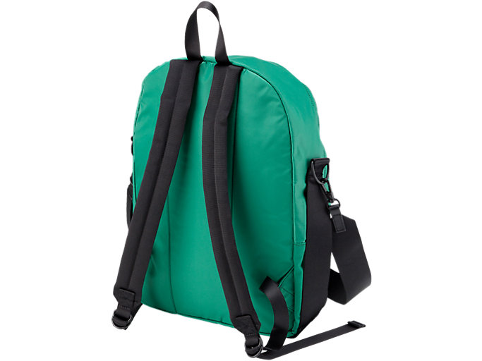 Back view of BACK PACK