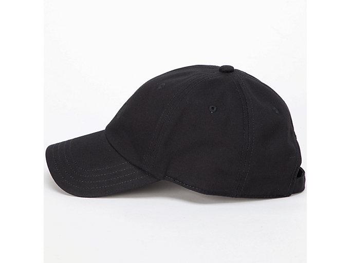 Alternative image view of CAP