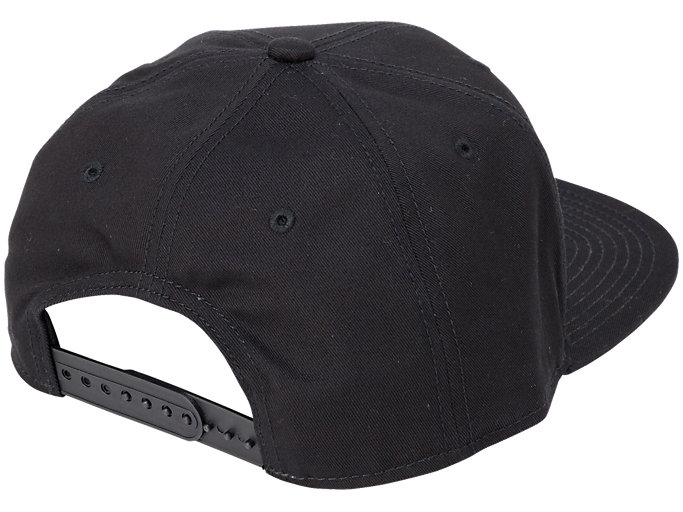 Back view of CAP