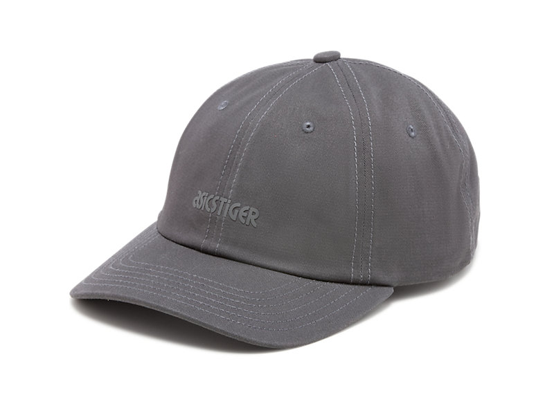 Dad Hat GRAPHITE GREY 9 Z