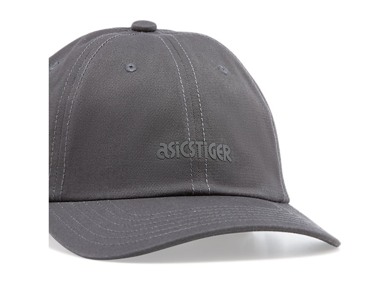 Dad Hat GRAPHITE GREY 13 Z