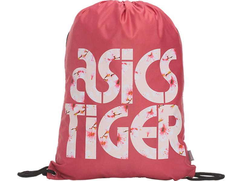 CB Gym Bag Rouge 1 FT