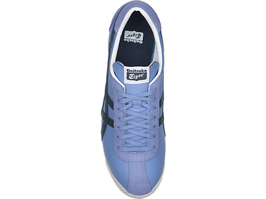 TIGER CORSAIR CORNFLOWER BLUE/DARK BLUE