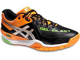 GEL-BLAST6