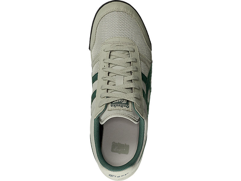 ULTIMATE 81 FEATHER GREY/HAMPTON GREEN 21 TP