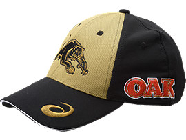 PENRITH PANTHERS MEDIA CAP